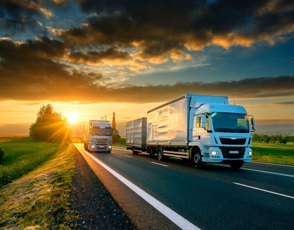 مزايا شركات النقل الكبيرة